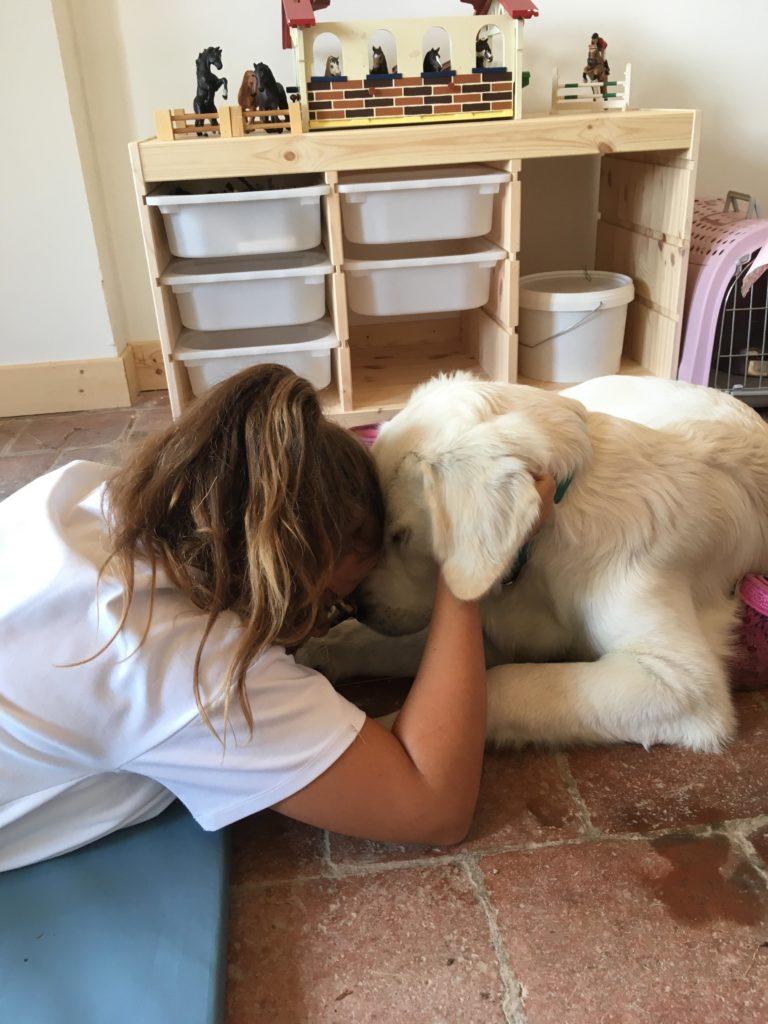 seance mediation enfant chien
